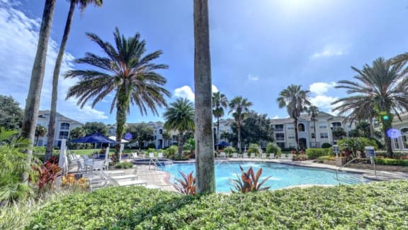 Sparkling Swimming Pool at Tuscany Bay Apartments, Tampa, FL