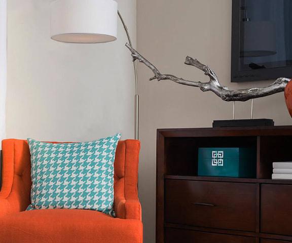 Comfy Sofa Chair at Pinehurst, Missouri, 64118