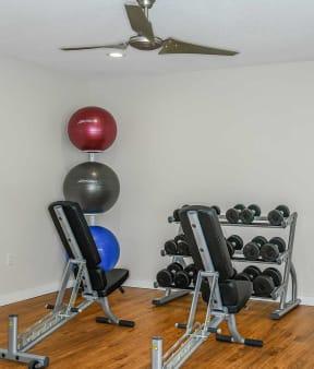 Fitness center   Jupiter Isle